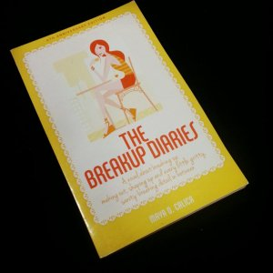 the breakup diaries reissue