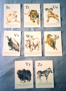 animal postcards 3