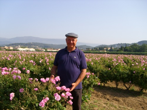 Patriarch Joseph Mul with in his fields of roses, near Grasse, France. Joseph Mul grows the roses and jasmine used in Chanel's perfumes, including the famous N. 5.