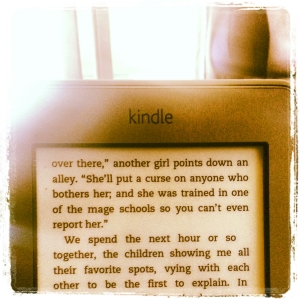A shot of my Kindle on the train on the way to Milan. I was reading Thorn by Intisar Khanani